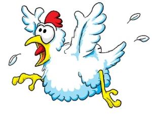 chicken-panic1